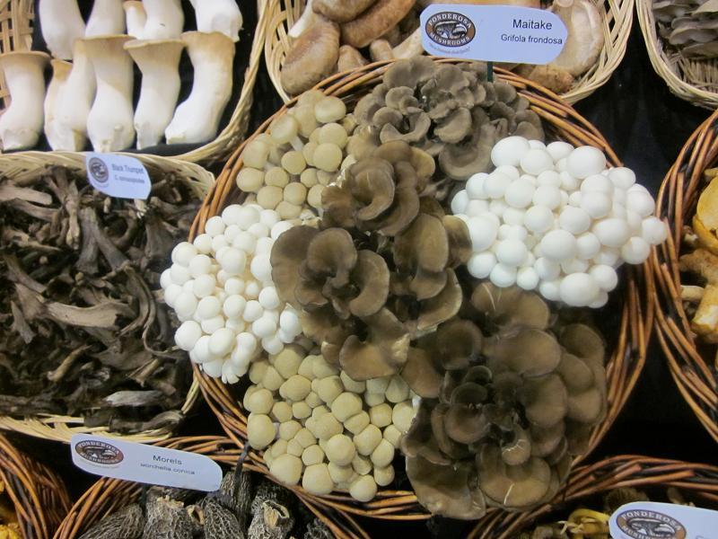 Ponderosa Mushrooms