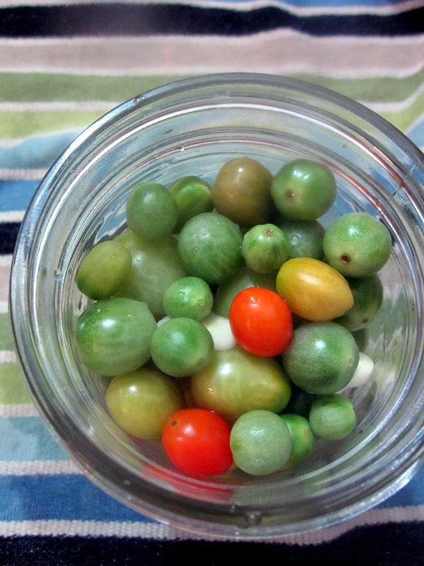 Green Tomatoes1