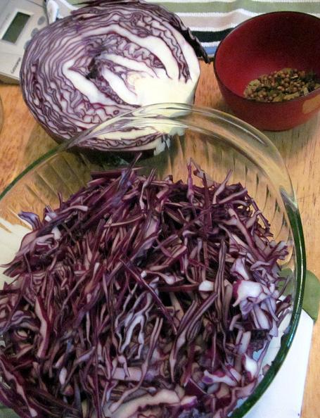 Pickled red Cabbage 3